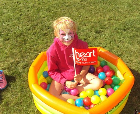 Bath Cats & Dogs Home Big Family Fun Day