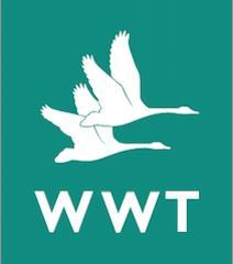 WWT Slimbridge