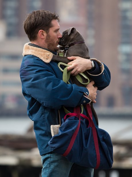 Tom Hardy on set of 'Animal Rescue'
