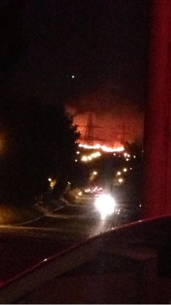 Canford Heath fire