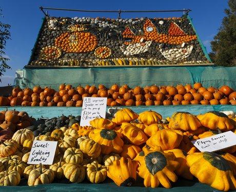 a pumpkin display of cinderella's carriage