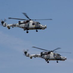 RNAS Yeovilton Air Day - Wildcats