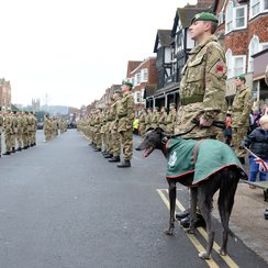 45 Company parade in Marlborough_2