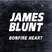 Image 10: James Blunt 'Bonfire Heart' single cover