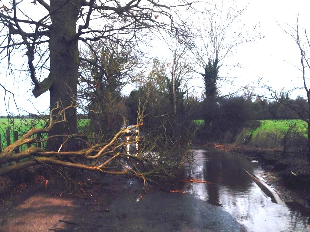 Wind Tree Down Croxley