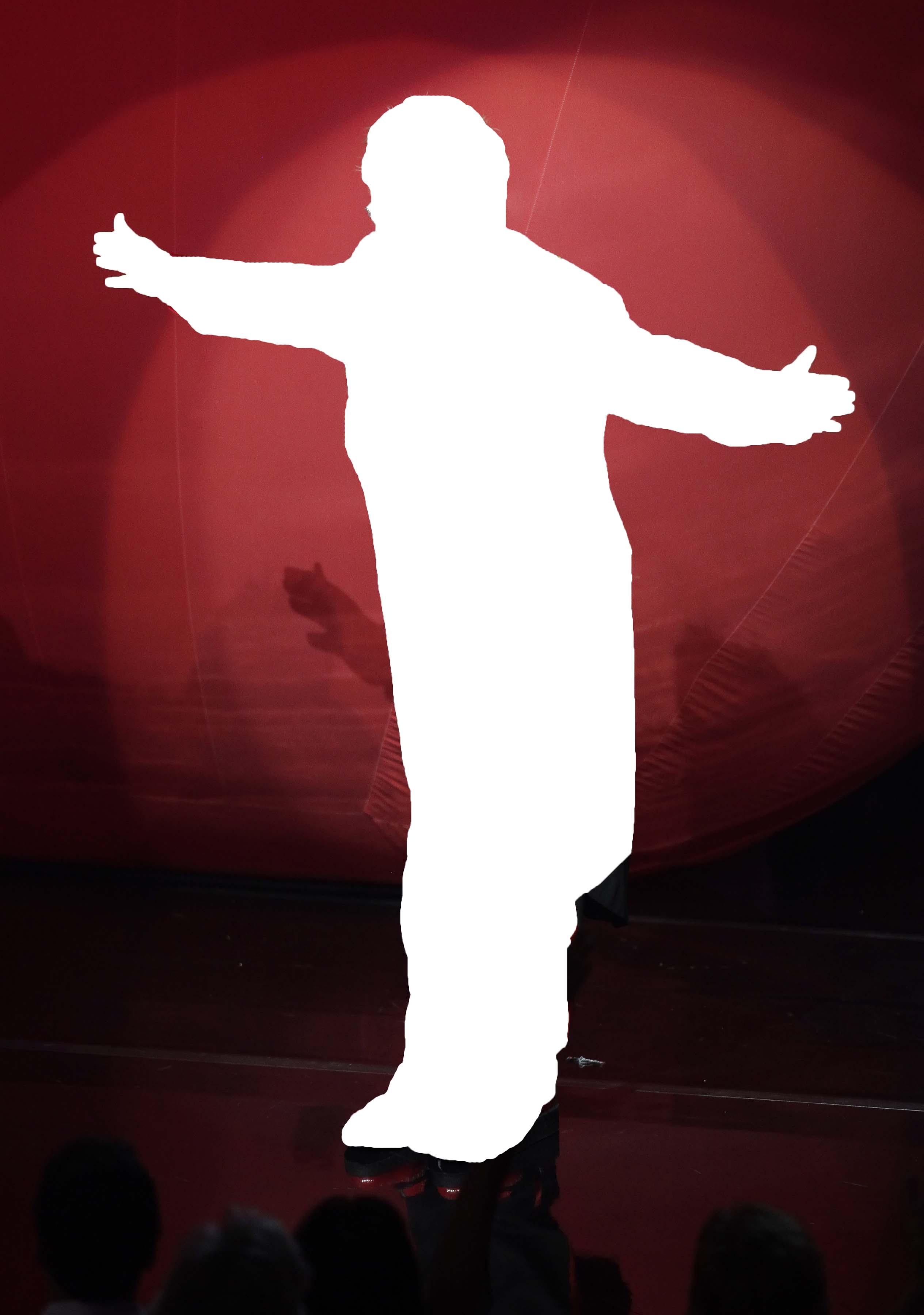 Elton John Silhouette