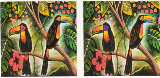 two painting of toucans