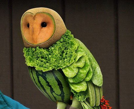 owl made of fruit and vegetables