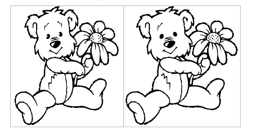 A bear spot the difference game