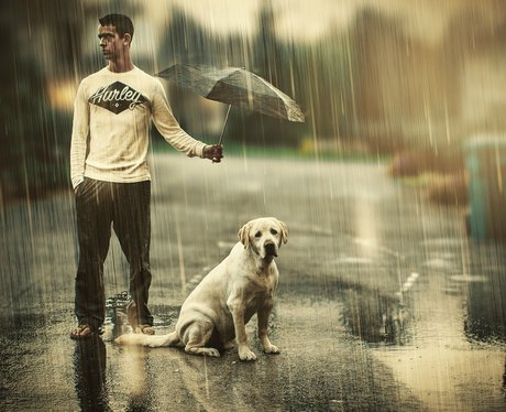 man holding umbrella over dog