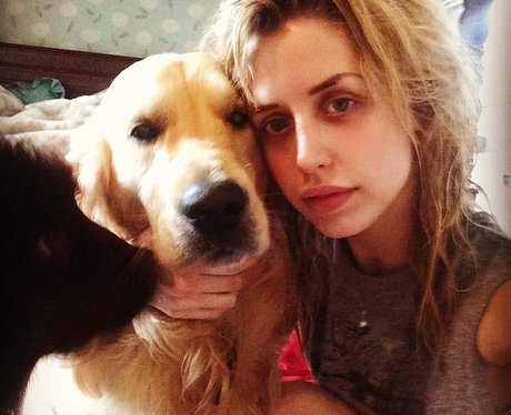 peaches geldof with dogs