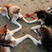 Image 4: Four dogs touching paws
