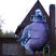 Image 6: A giant pigeon mural on a house
