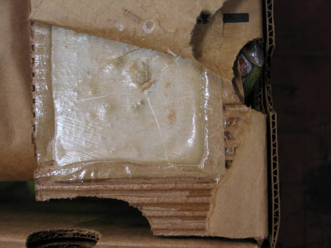 Cocaine seized in Portsmouth