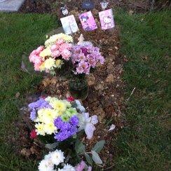 Amina's Grave