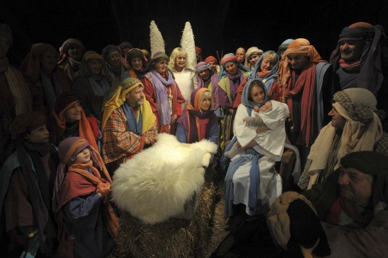 Christmas Shows -Nativity