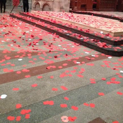 Poppies in Truro Cathedral