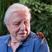 Image 3: David Attenborugh and a beetle