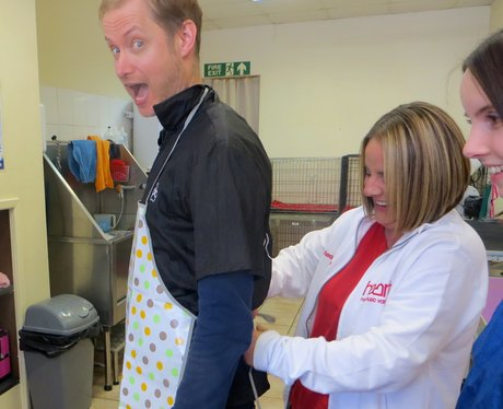 Stuart & Katy Try Work Experience!