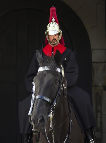 Jamie Horse Guard
