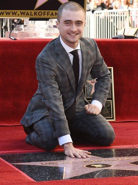 Daniel Radcliffe Hollywood Star of Fame