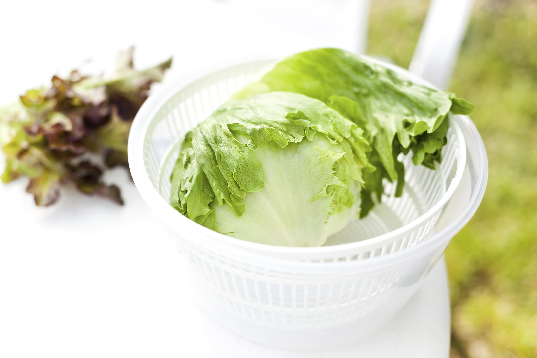 Salad spinner
