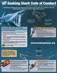 Advice when encountering Basking Sharks