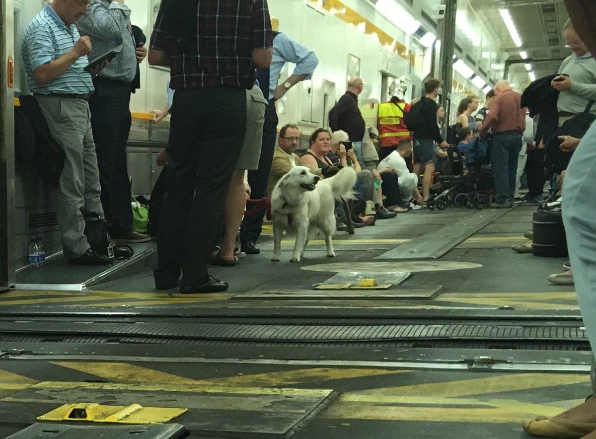 Eurotunnel delays
