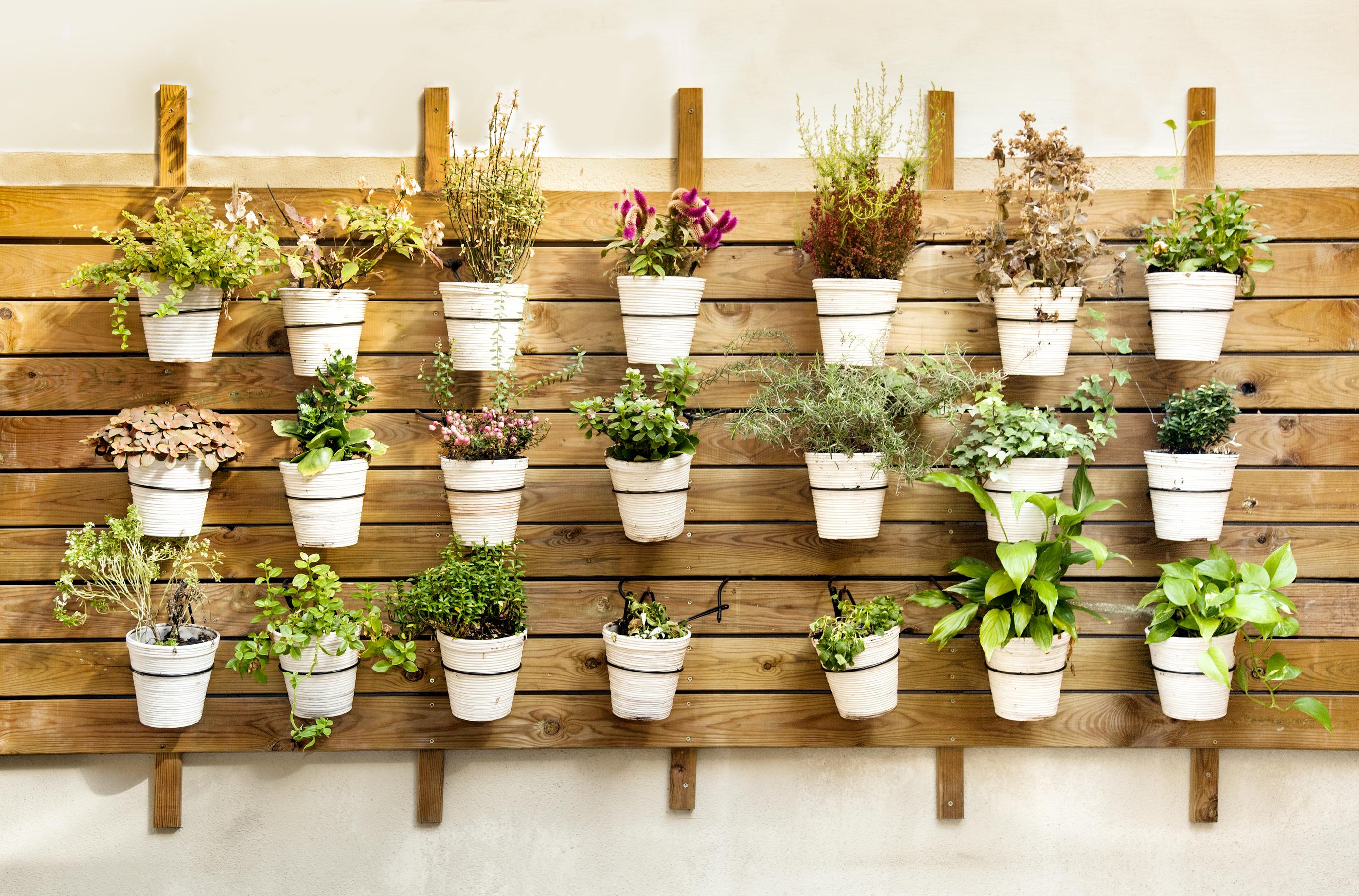 hanging garden plant pots