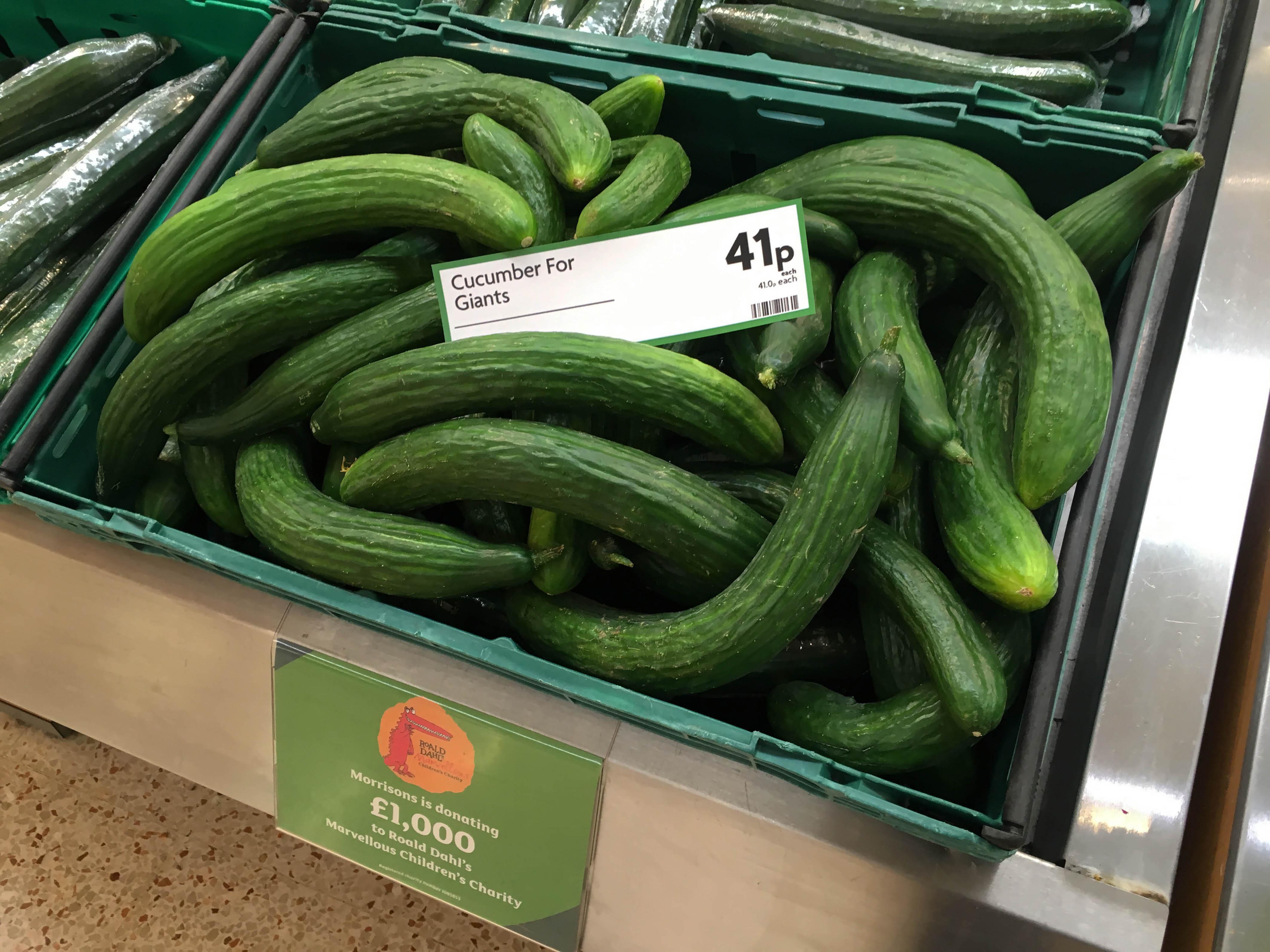 Giant Cucumbers Snozzcumbers