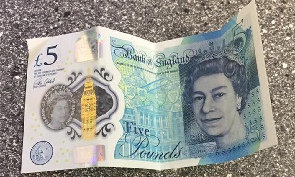 Five Pound Note Back The Image Kid Has It