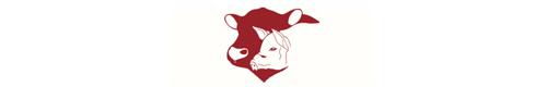 llenchwedd meats logo v2