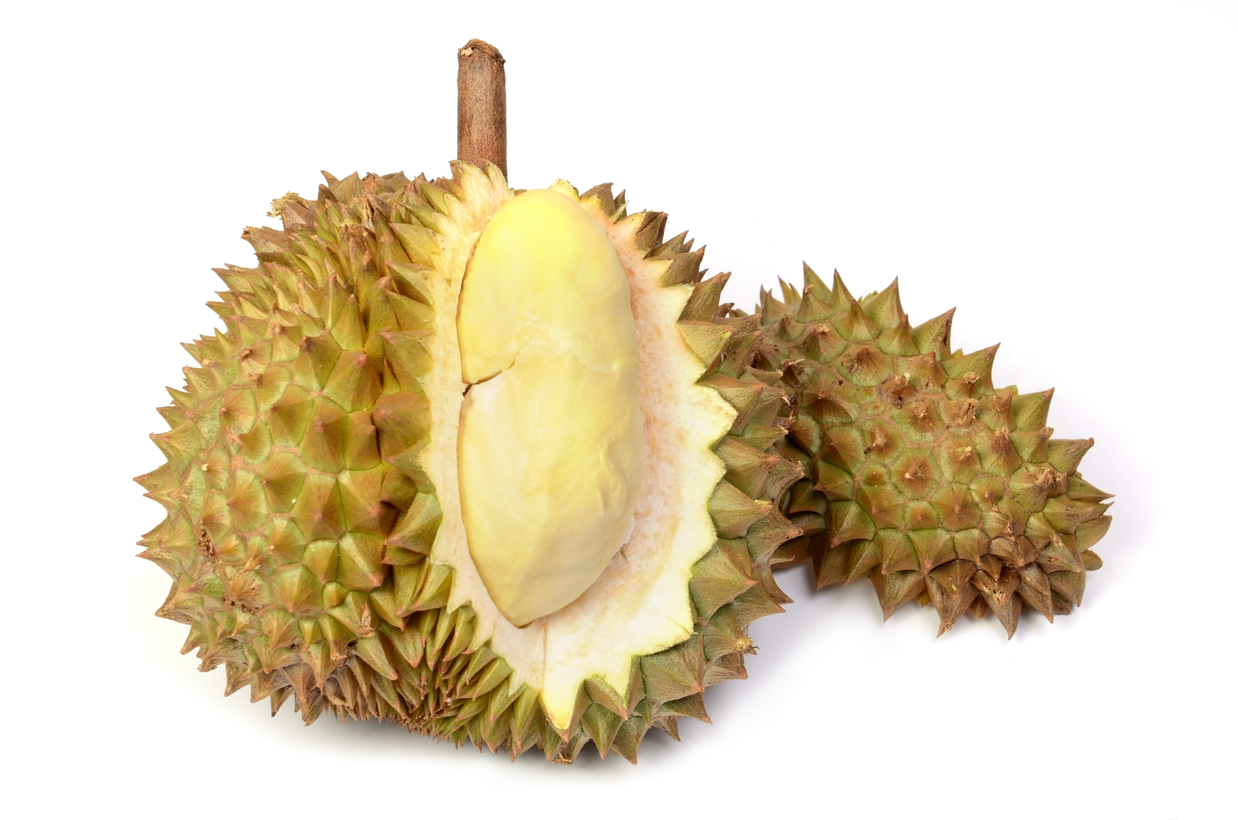 Durian Fruit AKA Vomit Fruit and Cheese Fruit