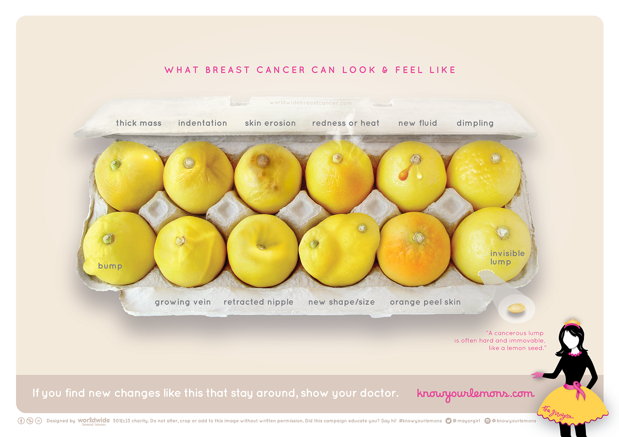 Picture of Lemons illustrates symptoms of breast c