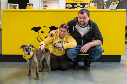 Scruffy the dog with new owners