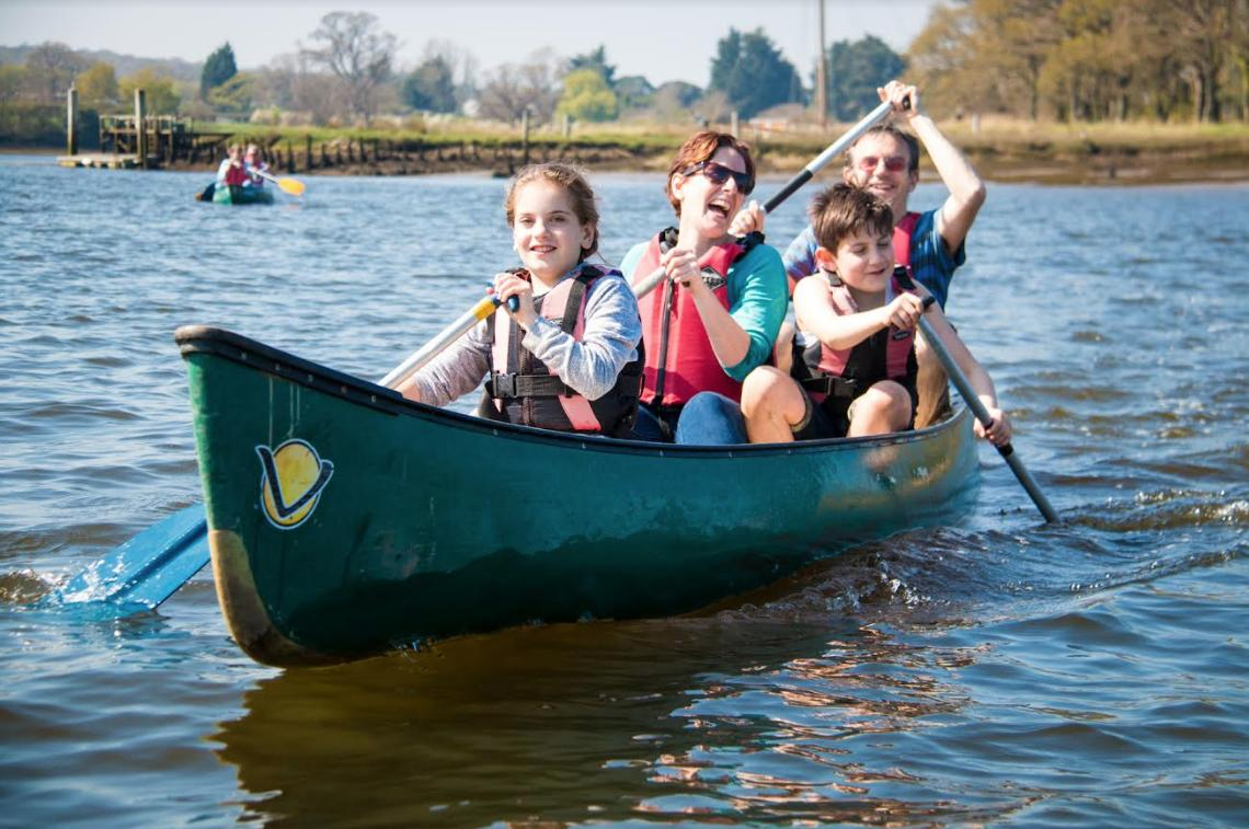 Hampshire Top Attractions: New Forest Activities