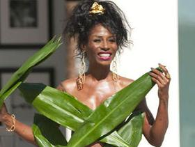 Sinitta palm leaves