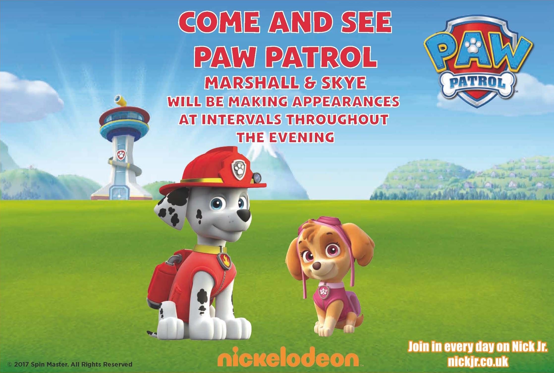Paw Patrol Cheltenham RoundTable Fireworks