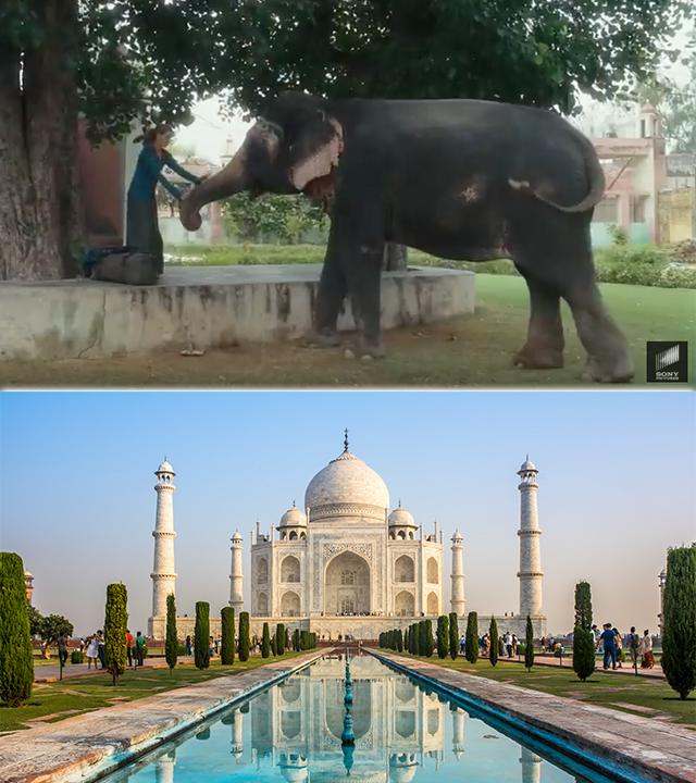 Eat Pray Love India
