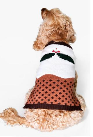 Matching Dog And Owner Christmas Sweaters