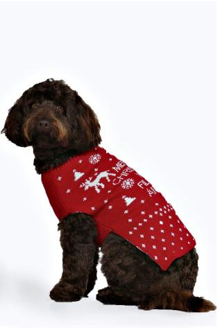 Boohoo Are Selling Matching Christmas Jumpers For Our Dogs And We