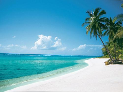 Cayman Islands - Beach