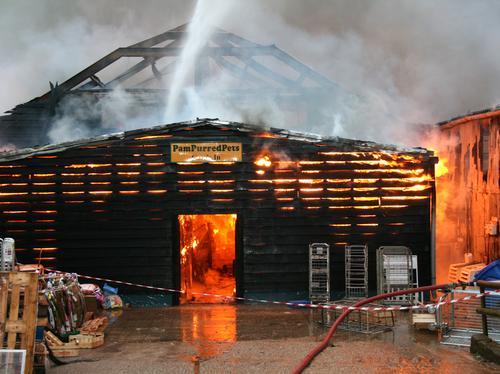 Kingsley Fire 1