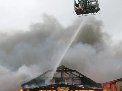 Kingsley Fire 4