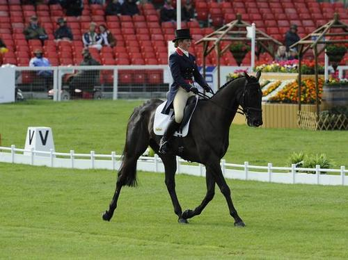 Kitty King riding Boondoggle in the Dressage
