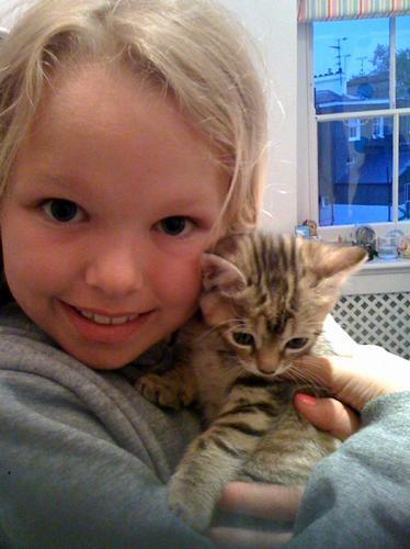 Jason Donovan's kitten