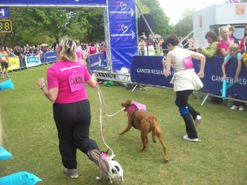 Race for Life 59
