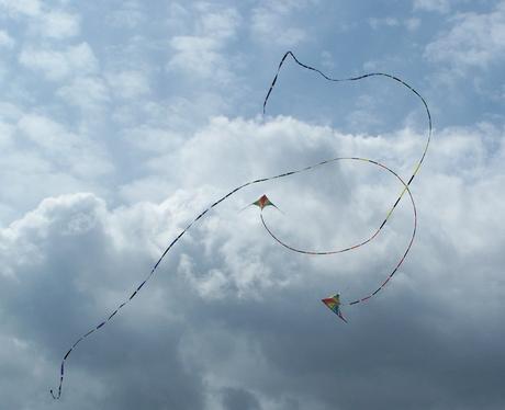 Rougham Kite Festival 2010 Gallery