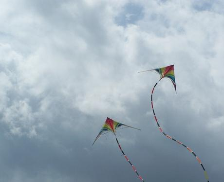Rougham Kite Festival 2010 Gallery