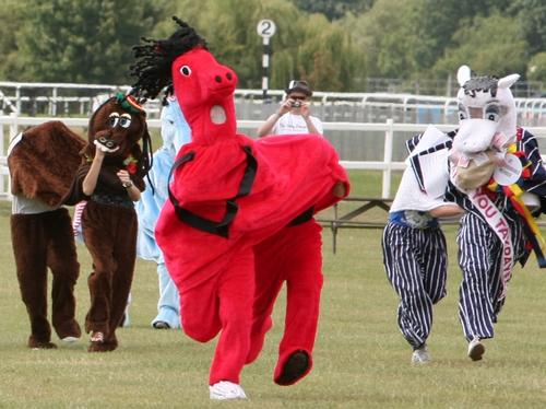 RSA Pantomime Horse Derby